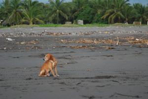Playa de Tilapita, Guatemala