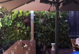 Jardín vertical en patio interior